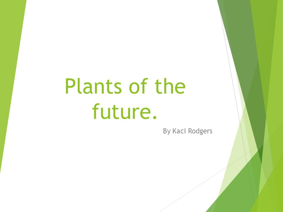 Plants of the future. By Kaci Rodgers