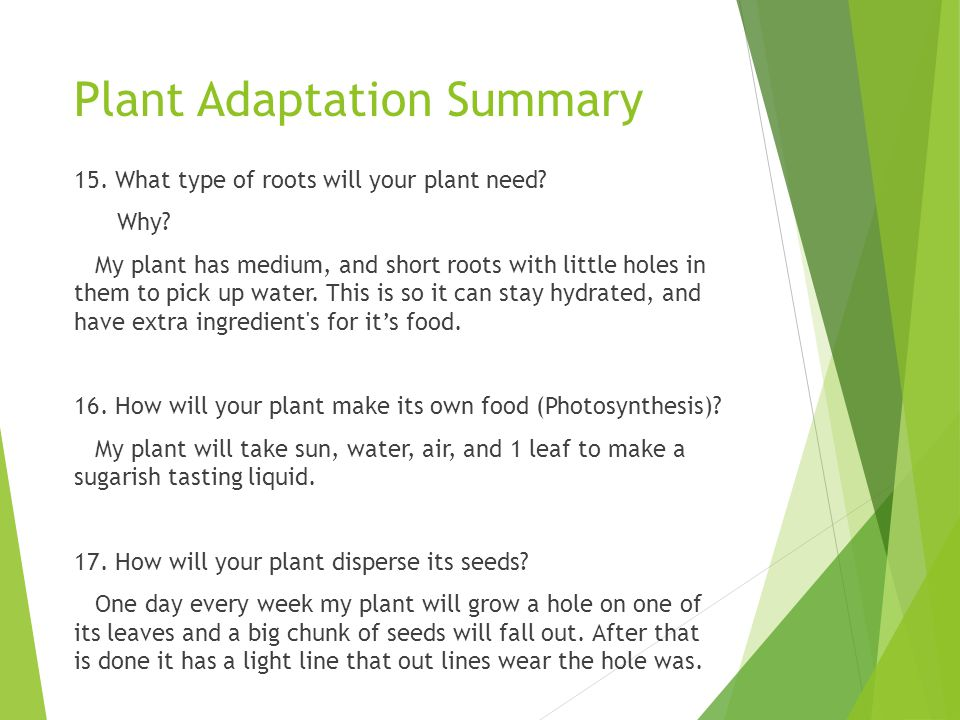 Plant Adaptation Summary