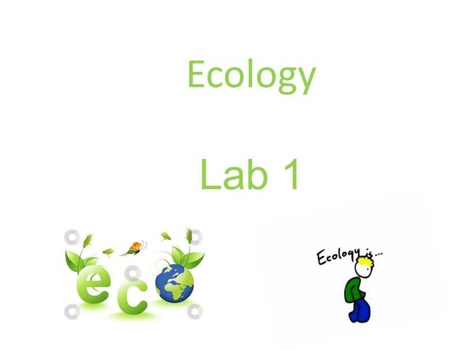 Ecology Lab 1
