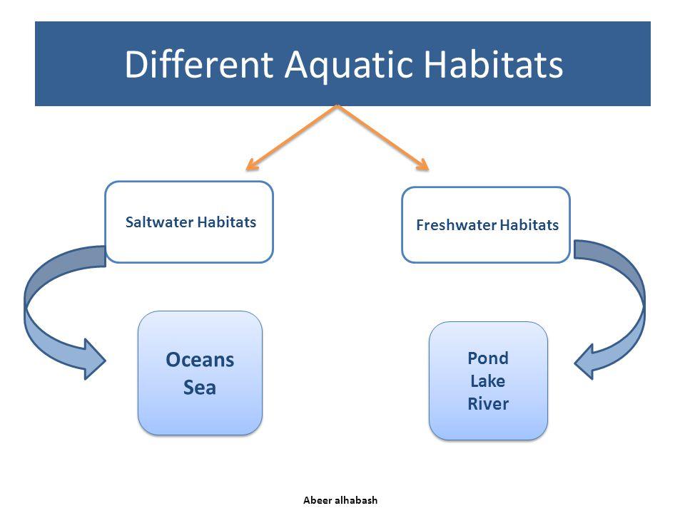Different Aquatic Habitats