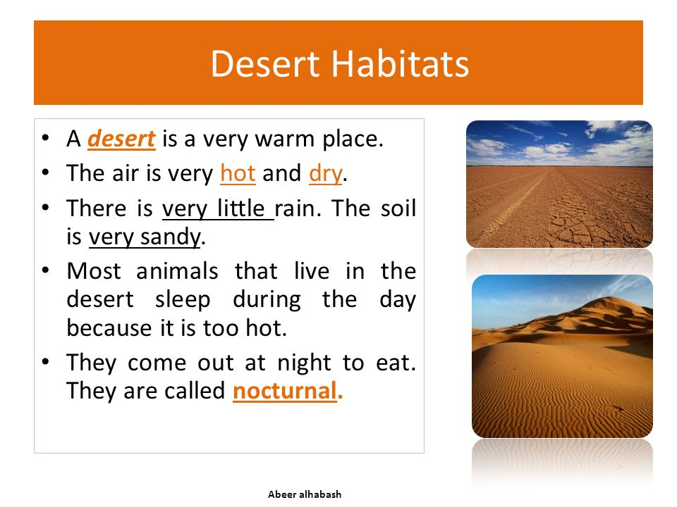 Desert Habitats A desert is a very warm place.