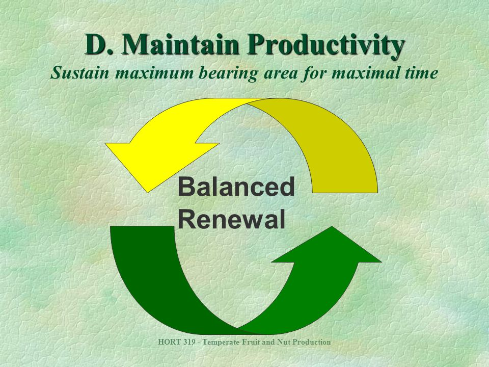 D. Maintain Productivity Sustain maximum bearing area for maximal time