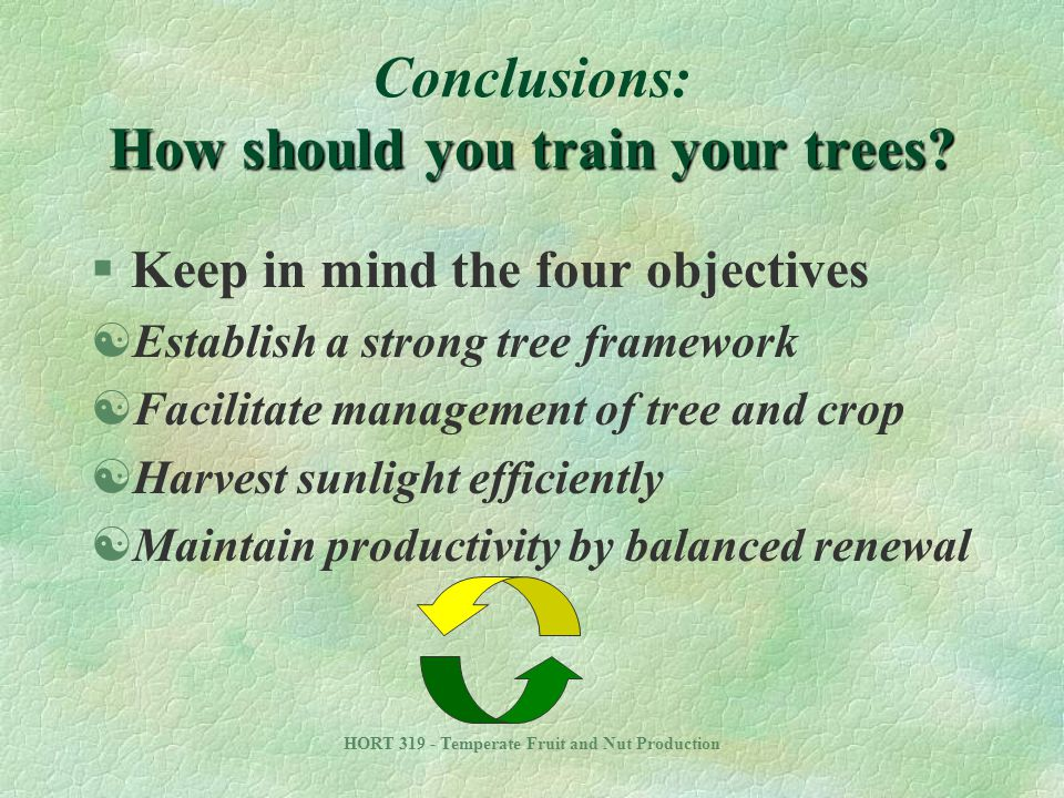 Conclusions: How should you train your trees
