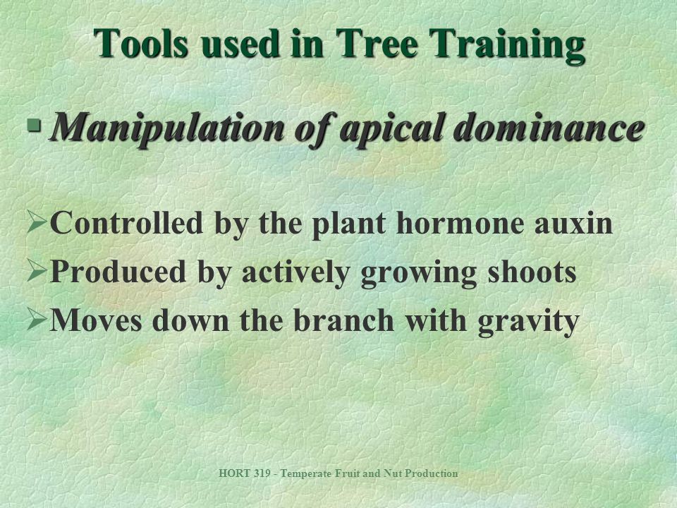 Tools used in Tree Training
