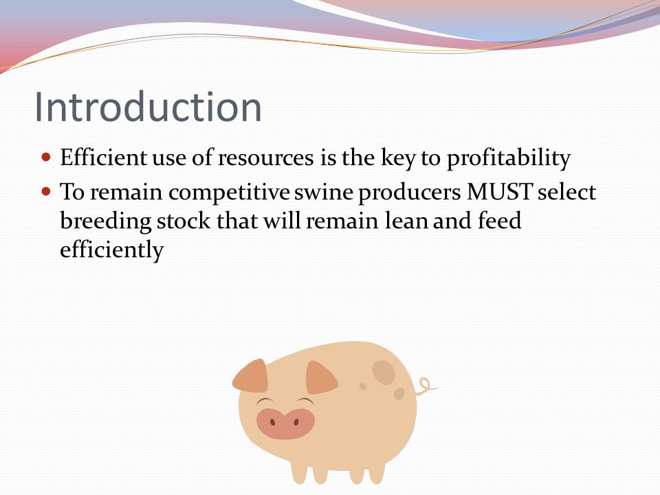 Introduction Efficient use of resources is the key to profitability