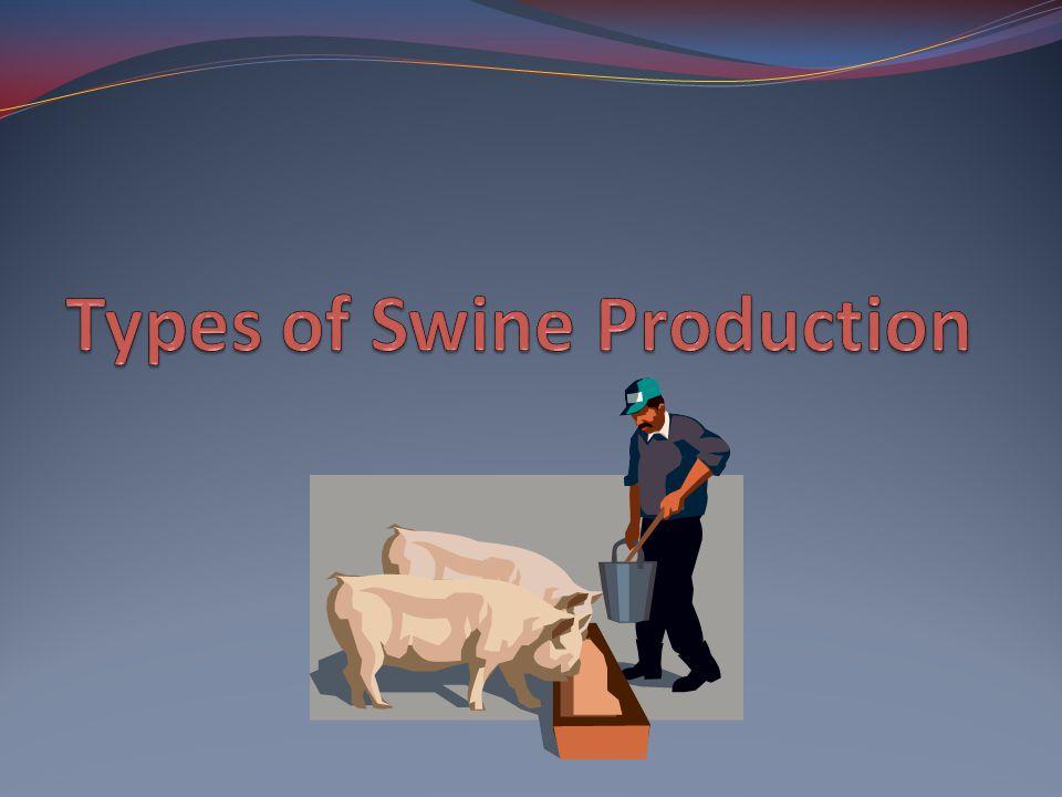 Types of Swine Production