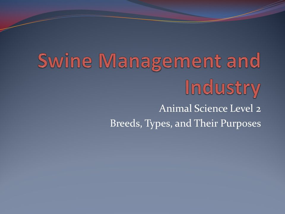 Swine Management and Industry