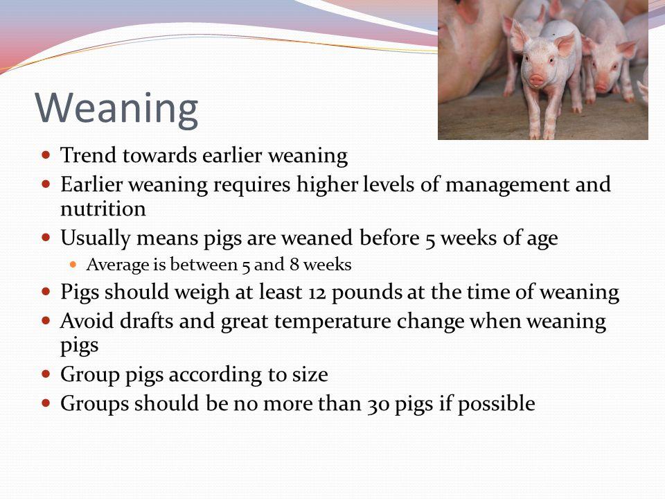Weaning Trend towards earlier weaning