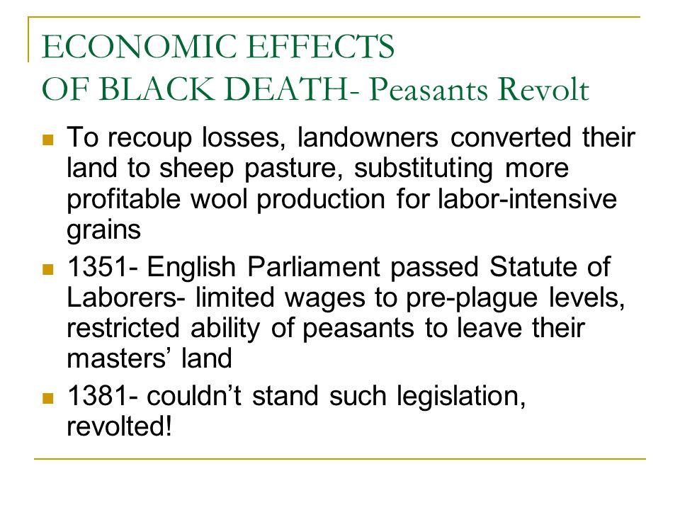ECONOMIC EFFECTS OF BLACK DEATH- Peasants Revolt