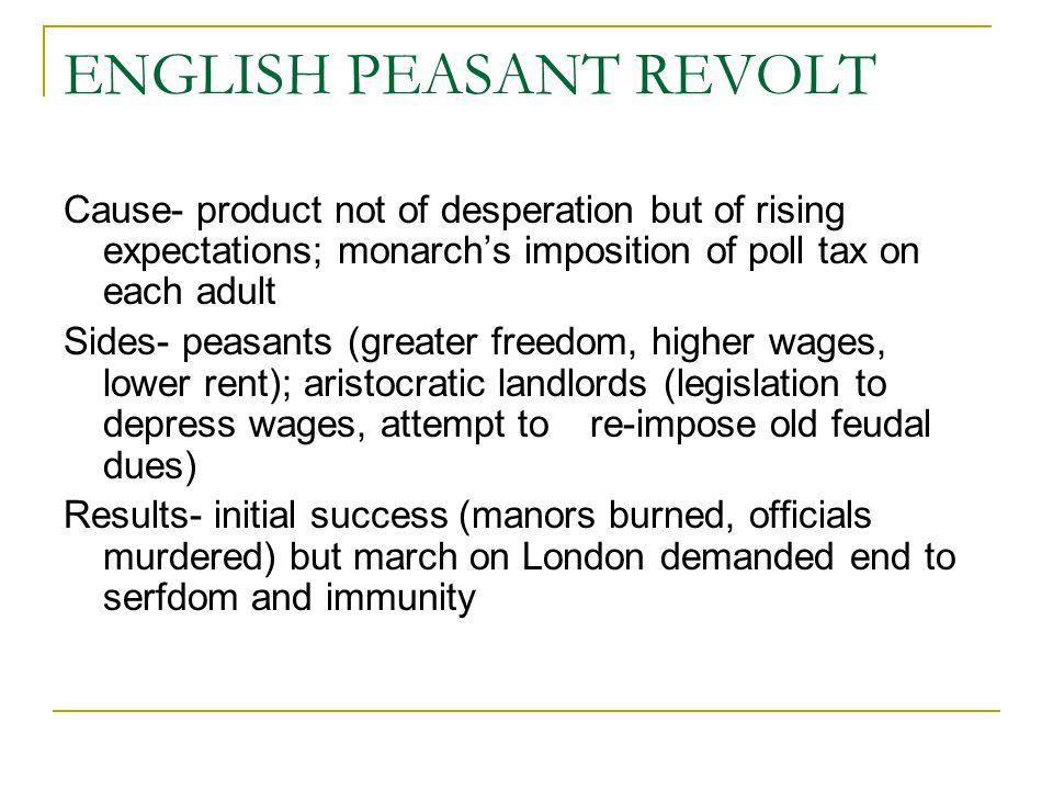 ENGLISH PEASANT REVOLT