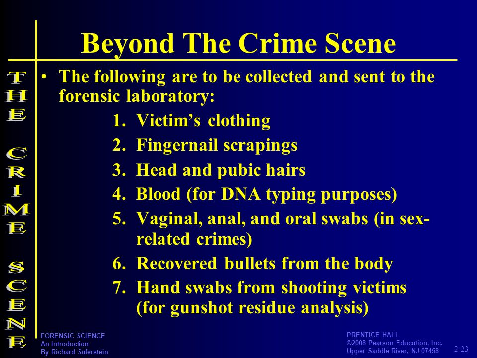Beyond The Crime Scene THE CRIME SCENE