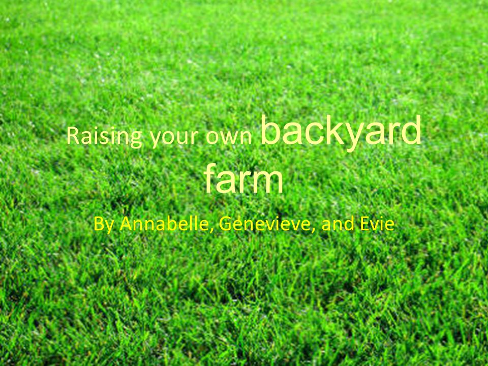 Raising your own backyard farm