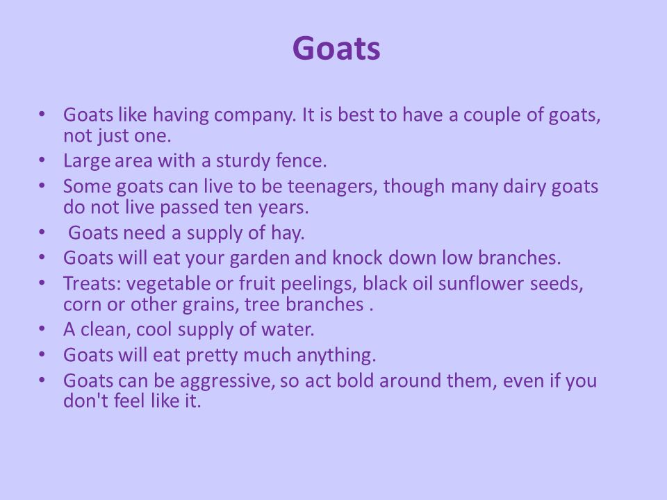 Goats Goats like having company. It is best to have a couple of goats, not just one. Large area with a sturdy fence.
