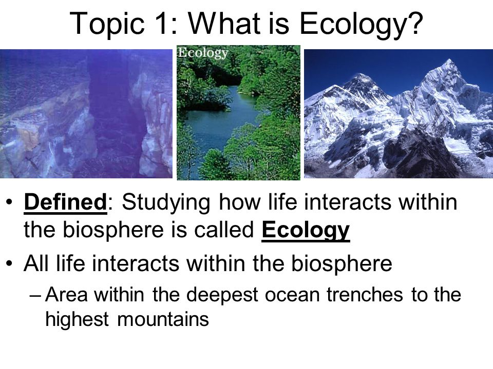 Topic 1: What is Ecology Defined: Studying how life interacts within the biosphere is called Ecology.