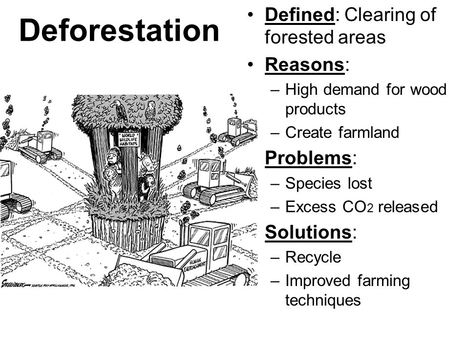 Deforestation Defined: Clearing of forested areas Reasons: Problems:
