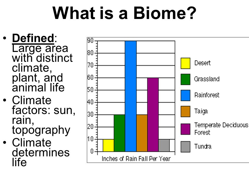 What is a Biome Defined: Large area with distinct climate, plant, and animal life. Climate factors: sun, rain, topography.