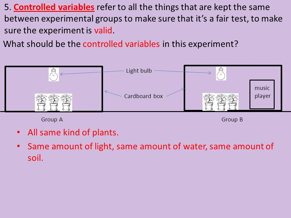 What should be the controlled variables in this experiment