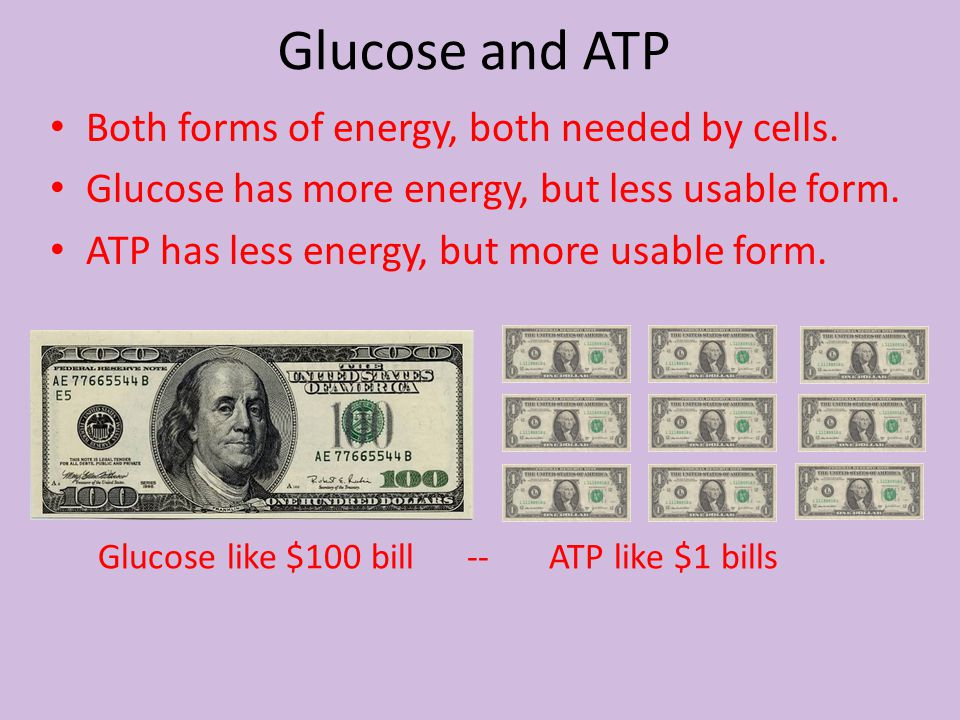 Glucose and ATP Both forms of energy, both needed by cells.