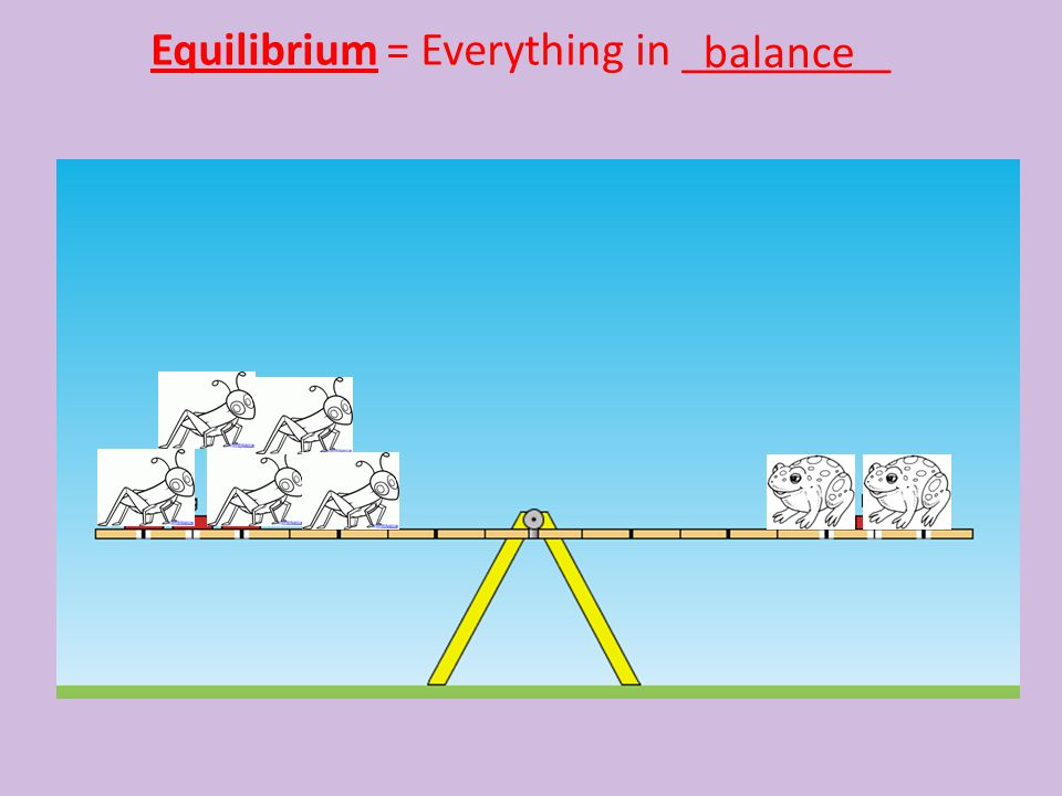 Equilibrium = Everything in _________