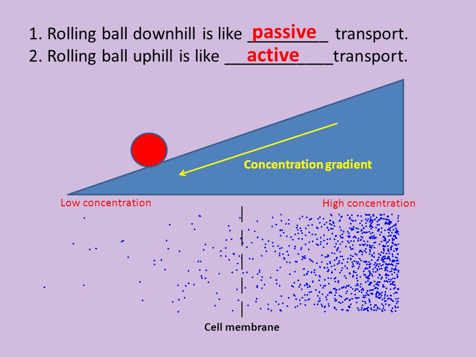 1. Rolling ball downhill is like _________ transport. 2