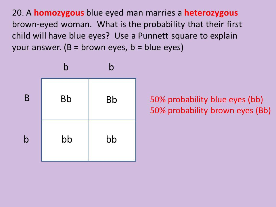 20. A homozygous blue eyed man marries a heterozygous brown-eyed woman
