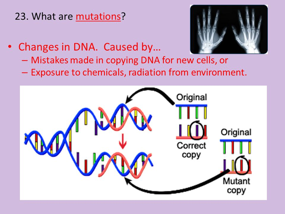 Changes in DNA. Caused by…