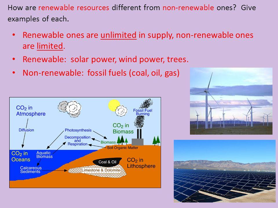 Renewable: solar power, wind power, trees.