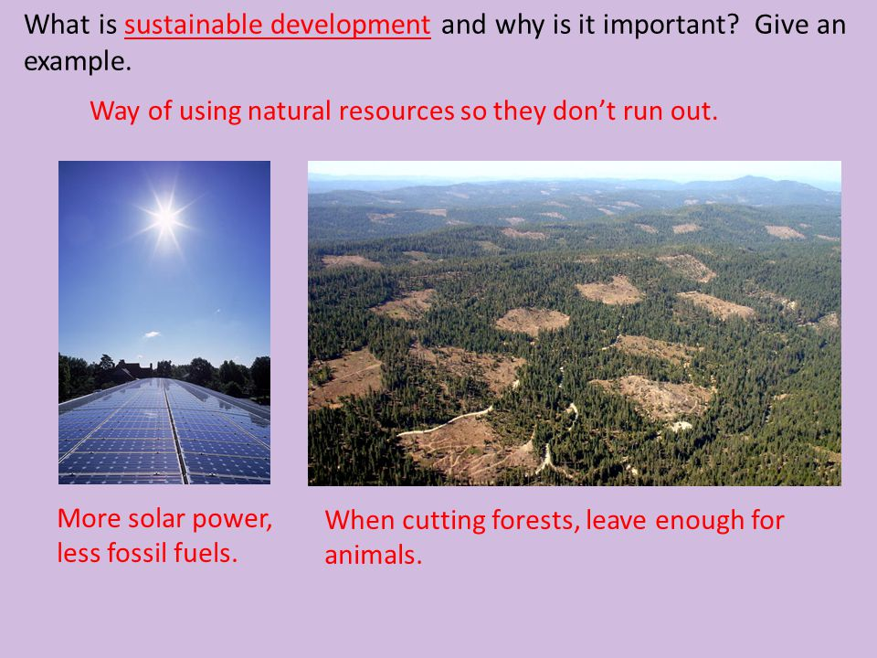 What is sustainable development and why is it important