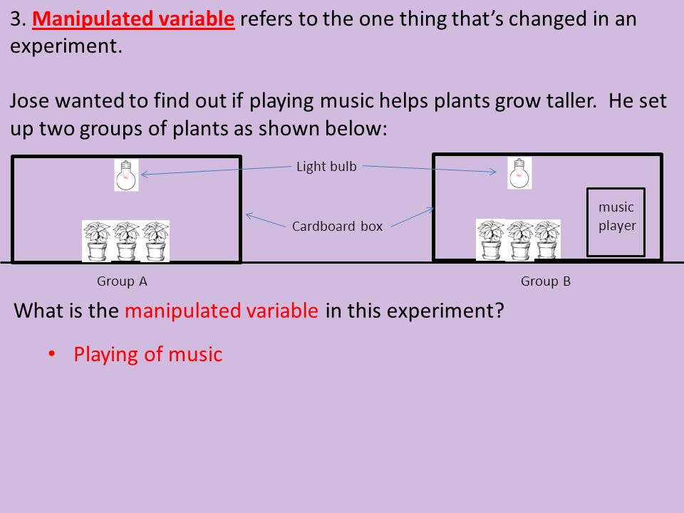 What is the manipulated variable in this experiment