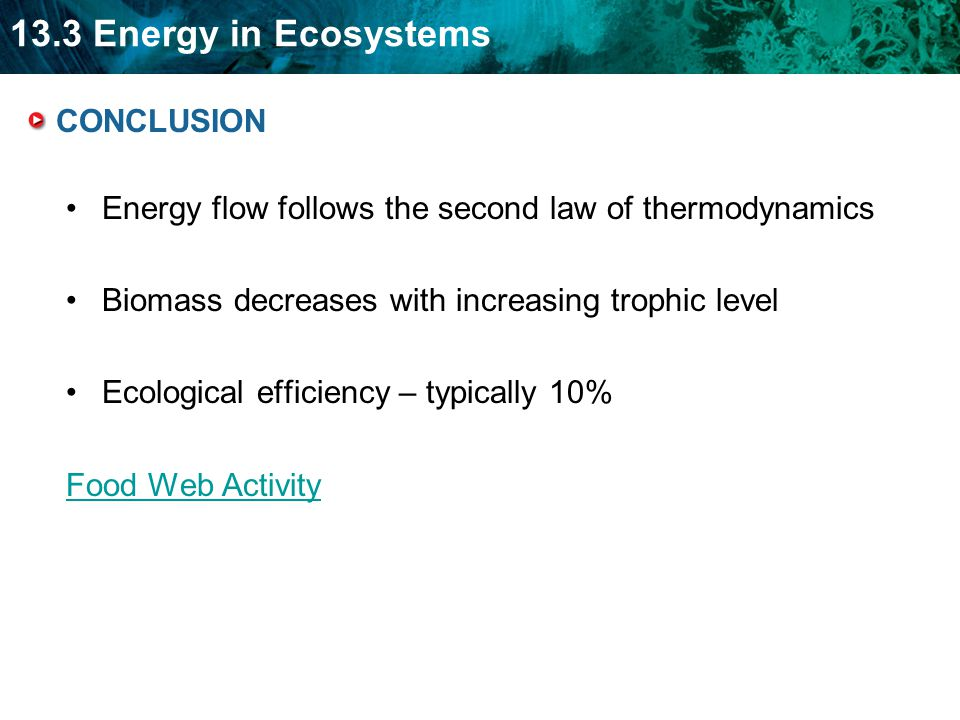 CONCLUSION Energy flow follows the second law of thermodynamics. Biomass decreases with increasing trophic level.