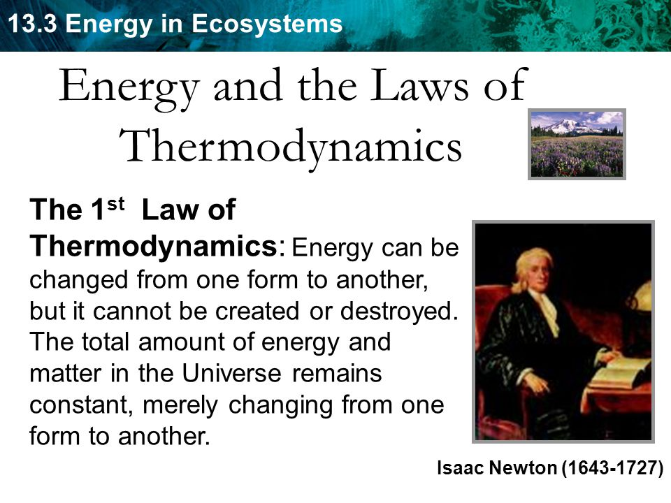 Energy and the Laws of Thermodynamics