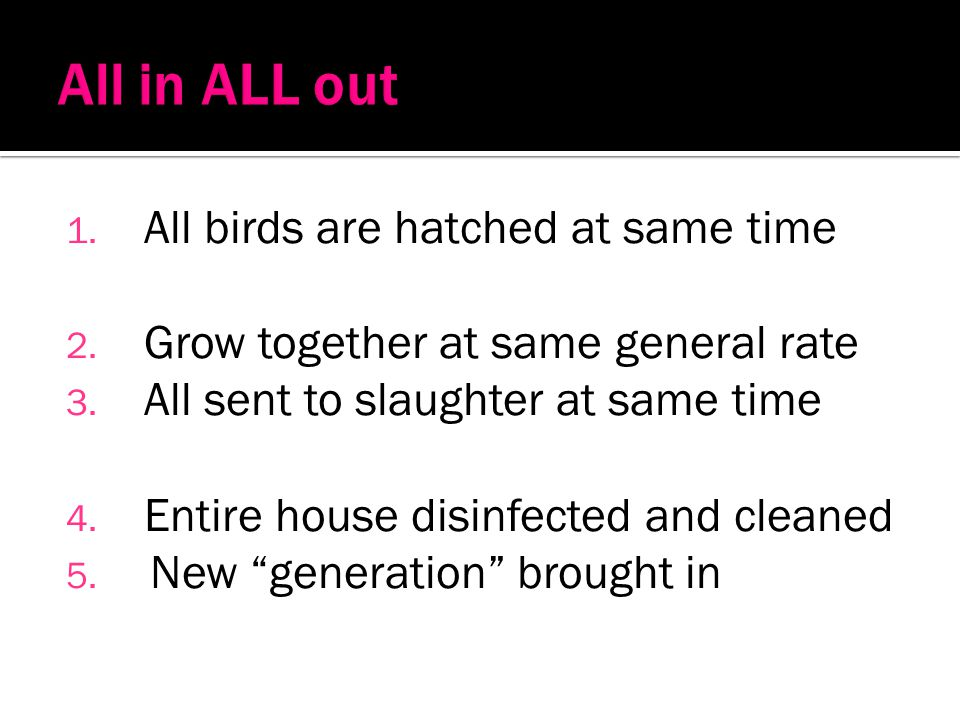 All in ALL out All birds are hatched at same time