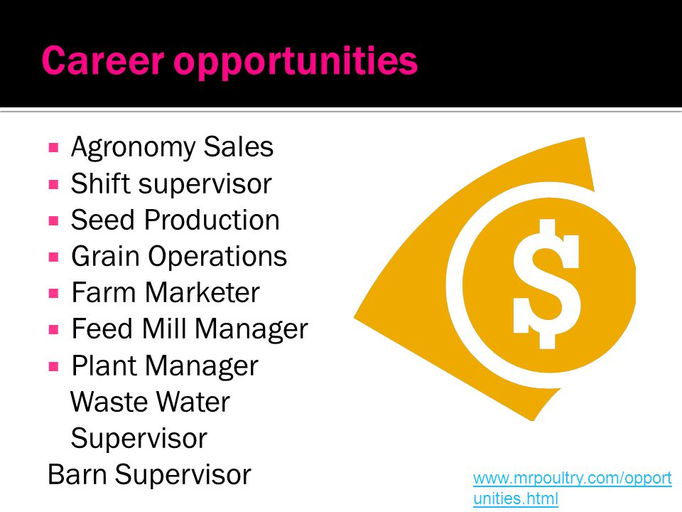 Career opportunities Agronomy Sales Shift supervisor Seed Production