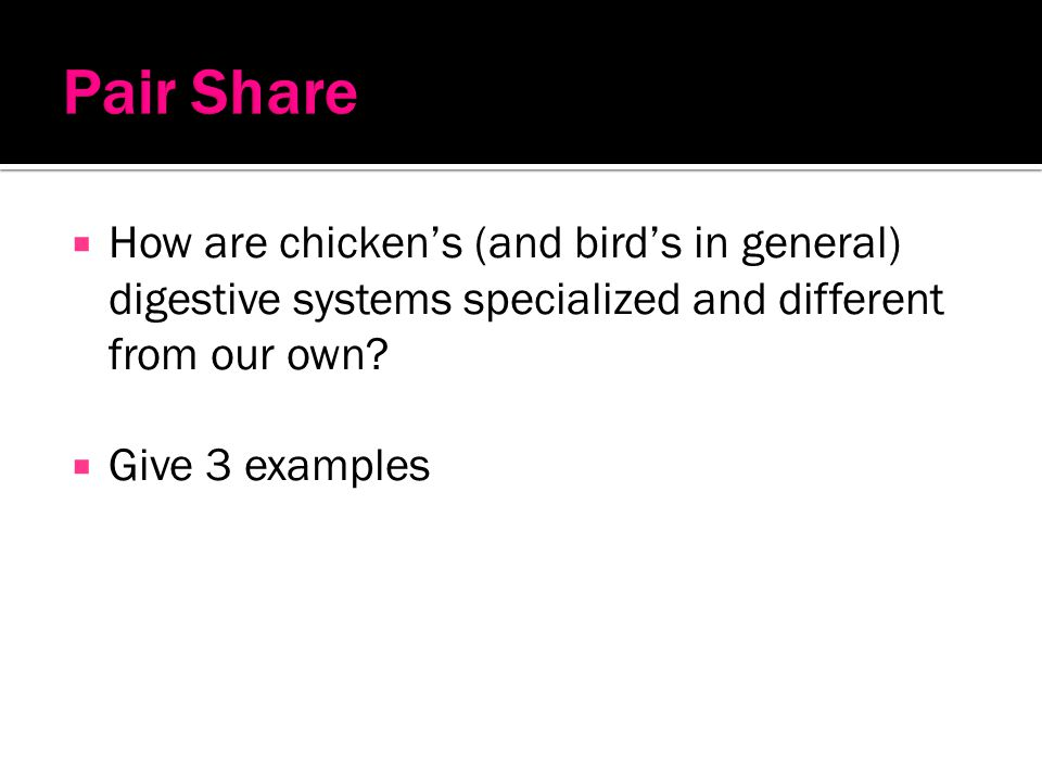 Pair Share How are chicken's (and bird's in general) digestive systems specialized and different from our own