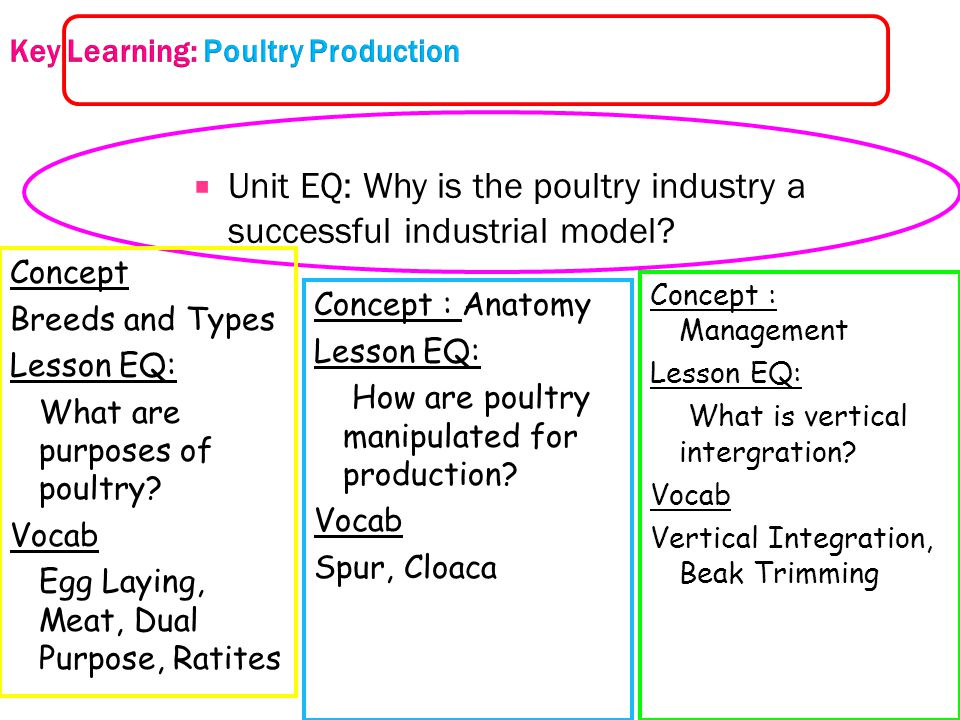Key Learning: Poultry Production