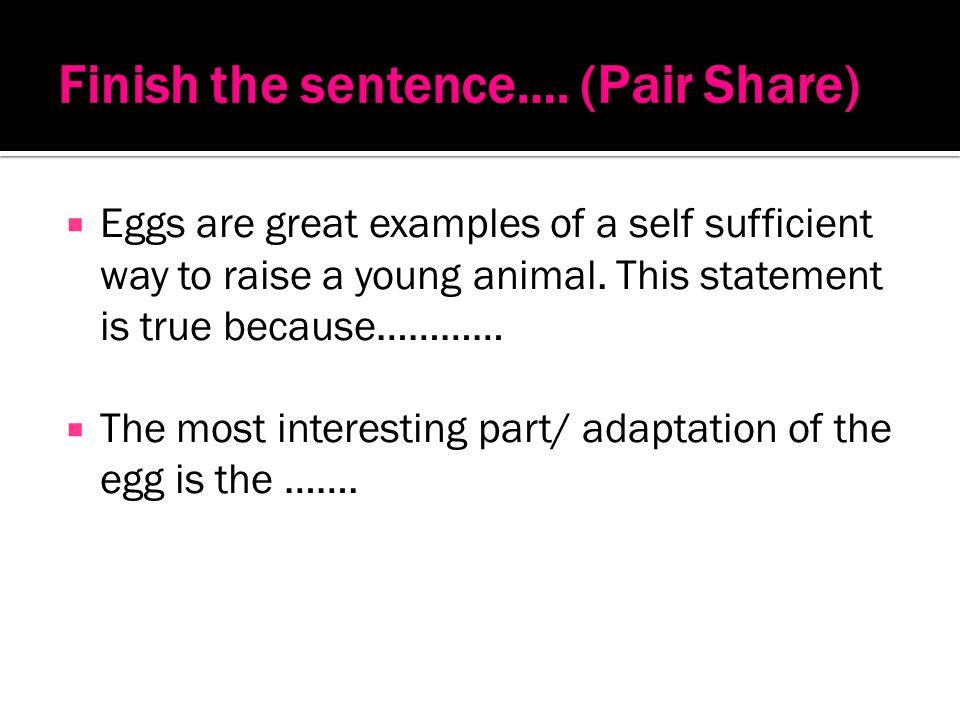 Finish the sentence…. (Pair Share)