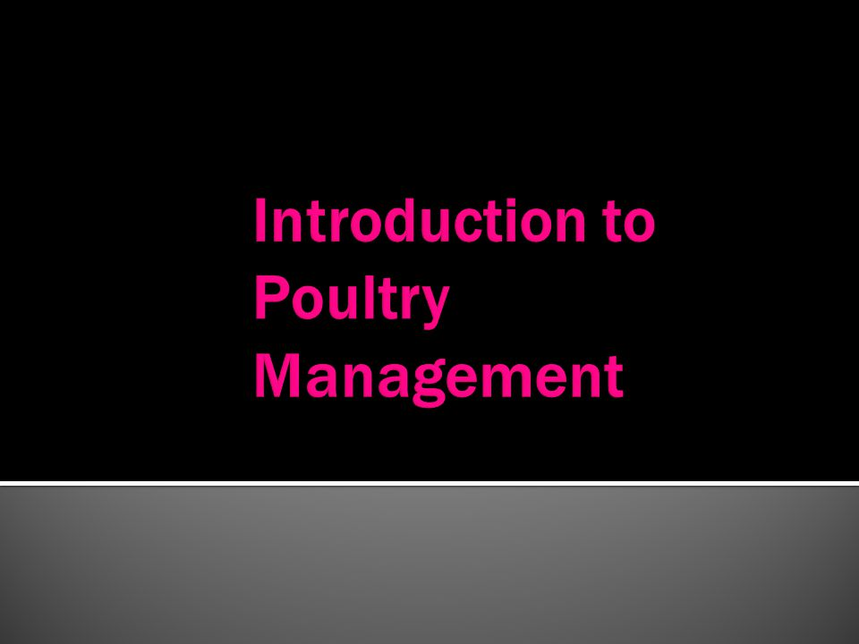 Introduction to Poultry Management