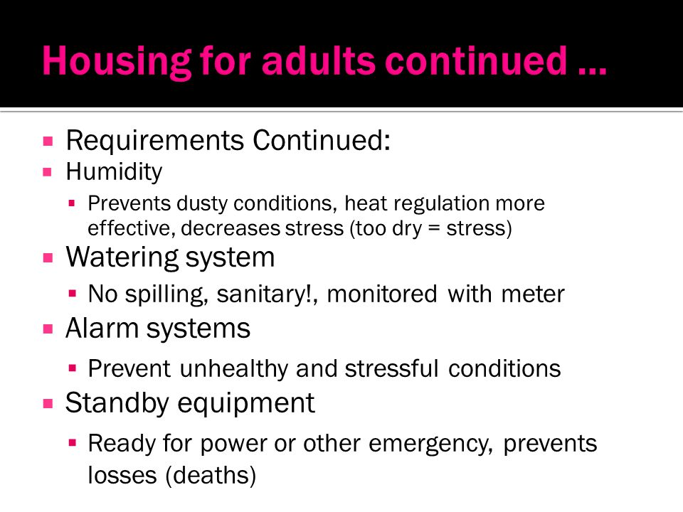 Housing for adults continued …