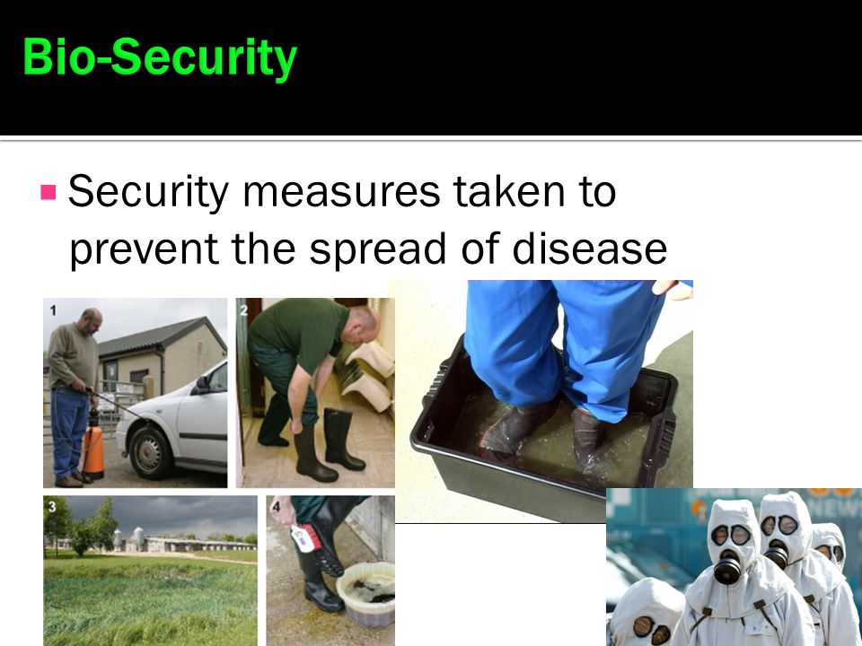 Bio-Security Security measures taken to prevent the spread of disease