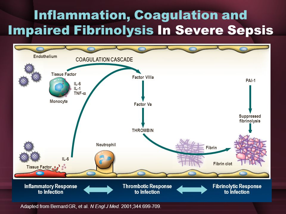 Inflammation, Coagulation and Impaired Fibrinolysis In Severe Sepsis