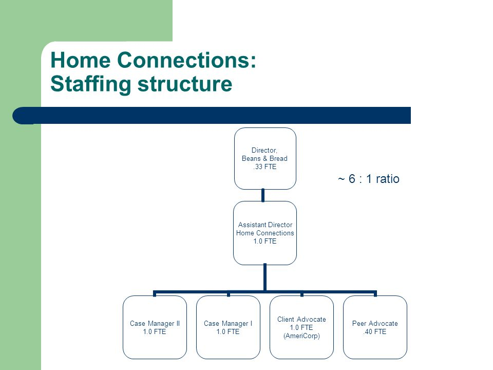 Home Connections: Staffing structure