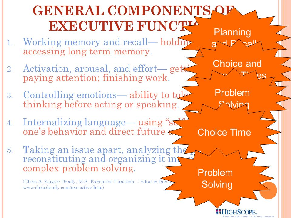 GENERAL COMPONENTS OF EXECUTIVE FUNCTION: