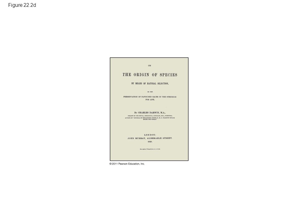 Figure 22.2d Figure 22.2 The intellectual context of Darwin's ideas.