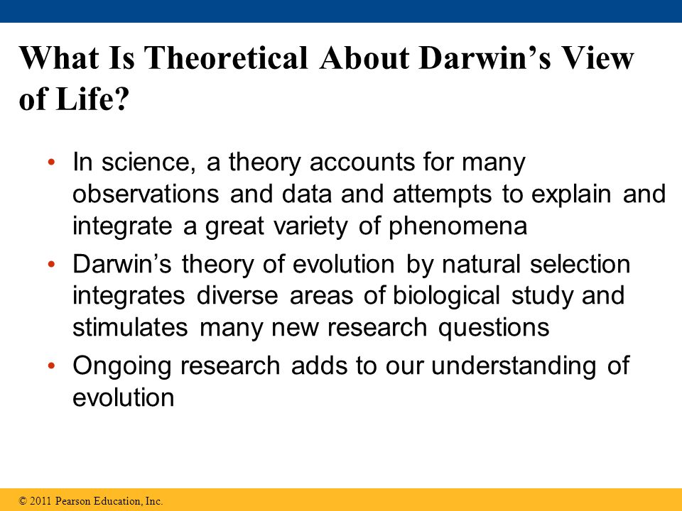 What Is Theoretical About Darwin's View of Life