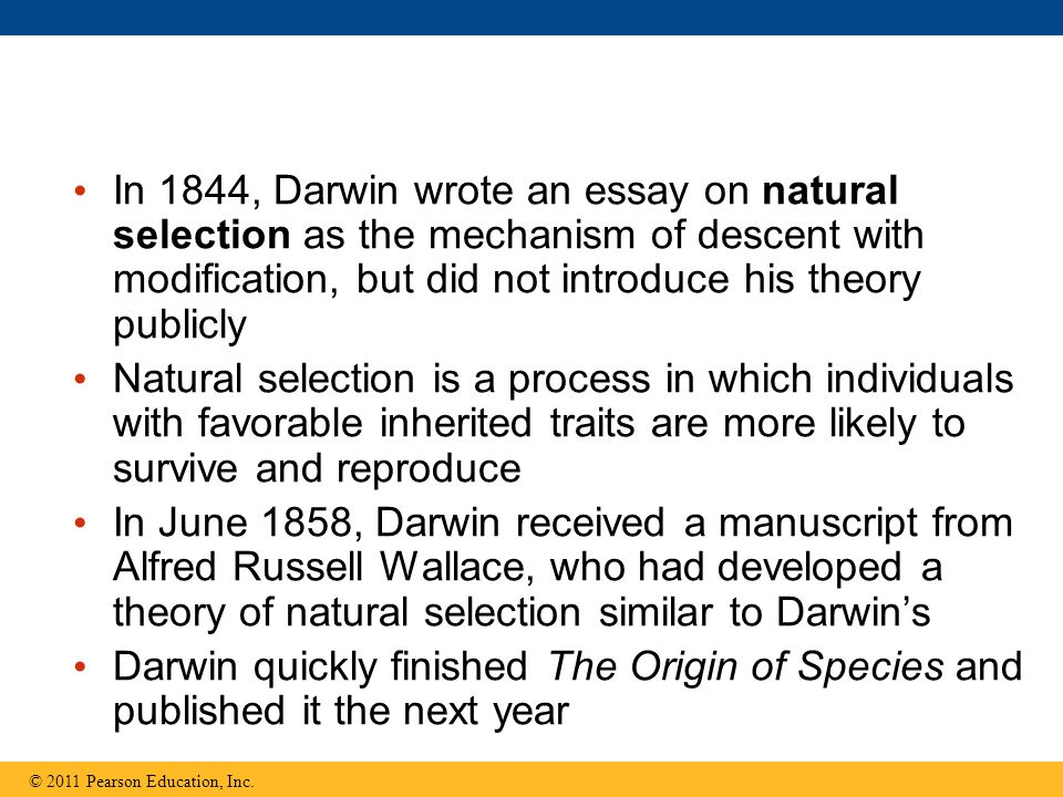 In 1844, Darwin wrote an essay on natural selection as the mechanism of descent with modification, but did not introduce his theory publicly