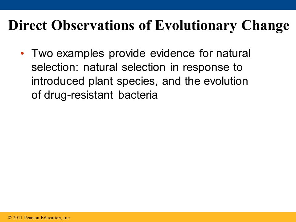 Direct Observations of Evolutionary Change