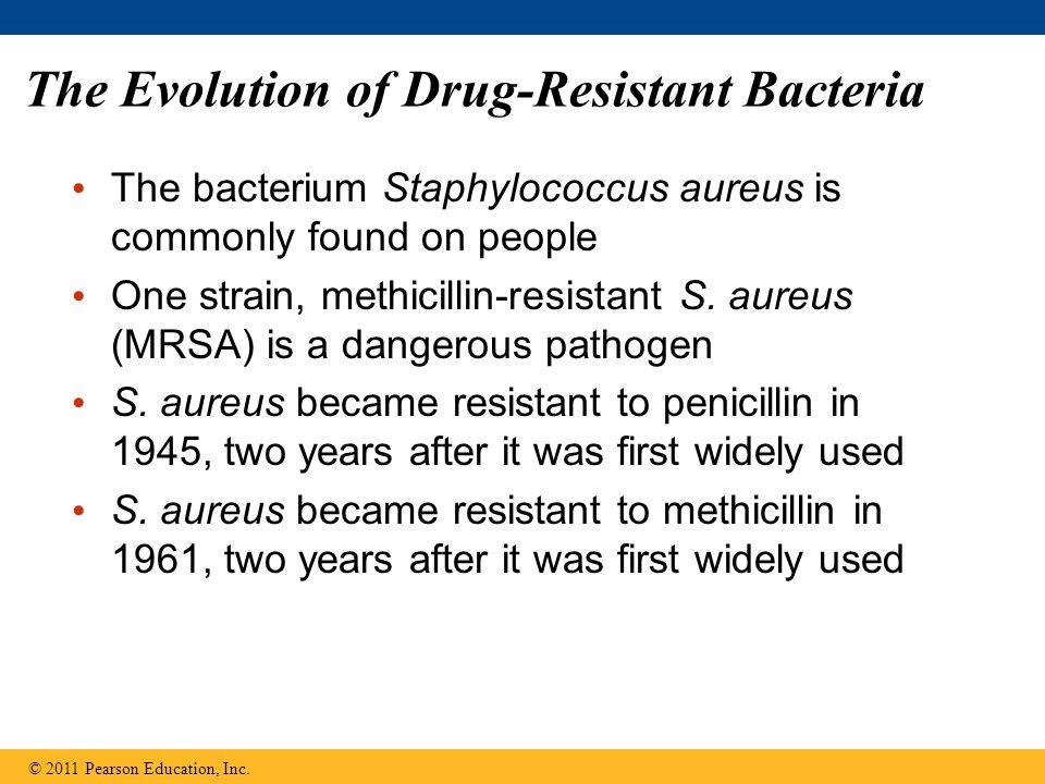 The Evolution of Drug-Resistant Bacteria