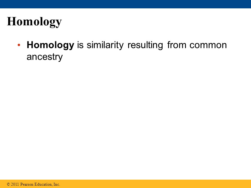Homology Homology is similarity resulting from common ancestry