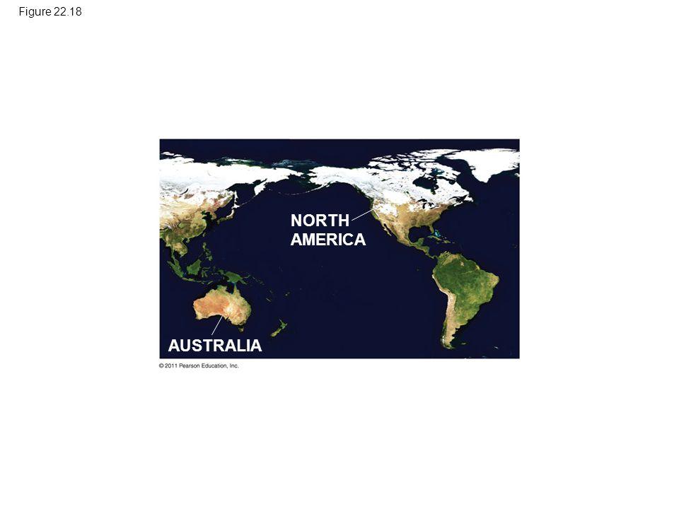 NORTH AMERICA AUSTRALIA Figure 22.18
