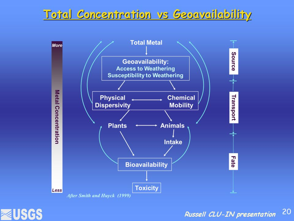 Total Concentration vs Geoavailability
